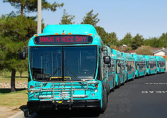picture of VVTA buses